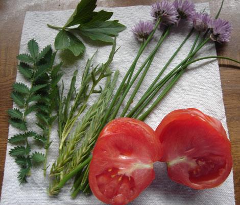 Salatkräuter