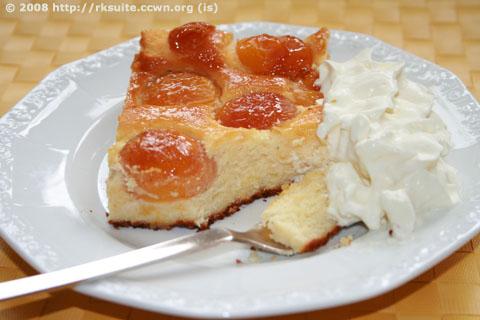 Aprikosen-Quark-Kuchen_2