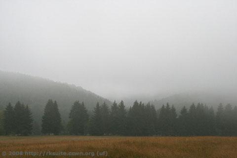 Thüringer Wald vom Stutenhaus aus