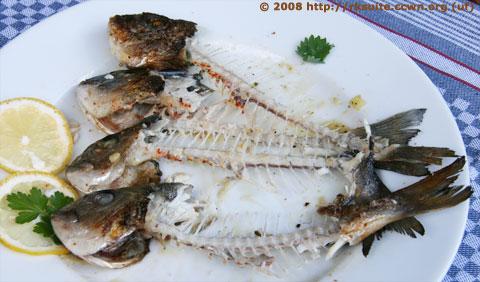 Leftovers vom Fisch